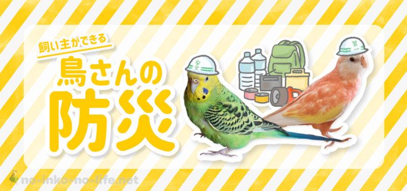 【鳥さんの防災】自分の子は自分で守る!きなもものために準備していること