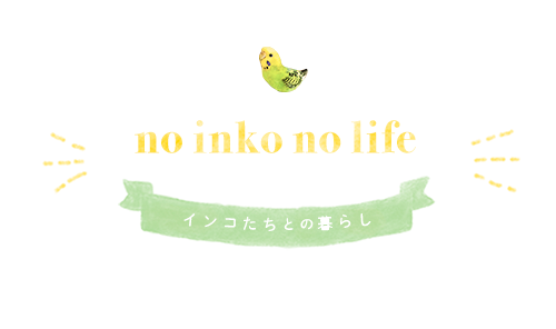 no inko no life